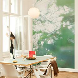 Murs / Plafonds